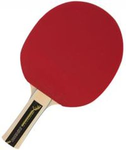 Nový sportovní koníček – vybavení na stolní tenis
