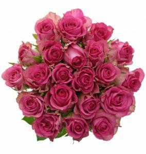 Ta největší kytice růží