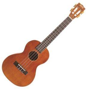 Malý hudební nástroj – ukulele